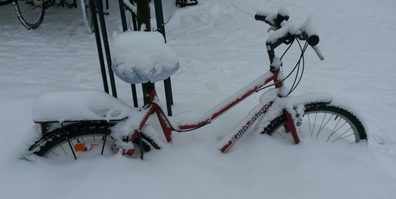 vintersykkel